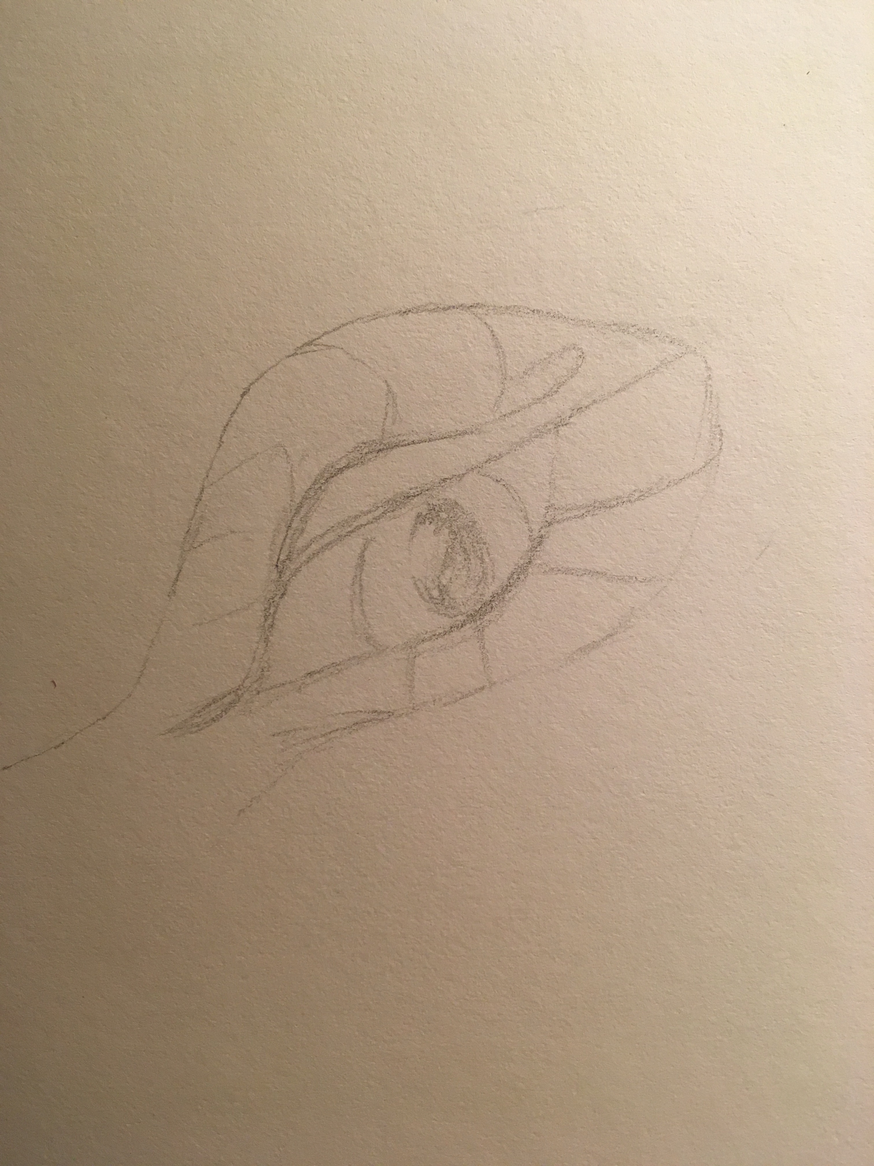 Sultry dragon eye in pencil