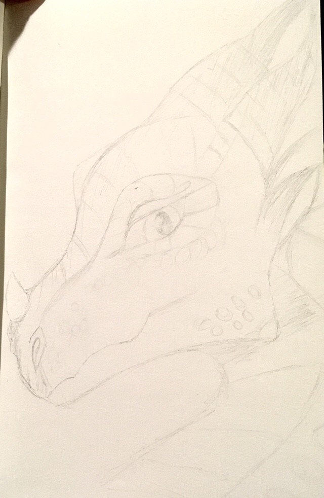 Fancy dragon in Pencil head only sultry I