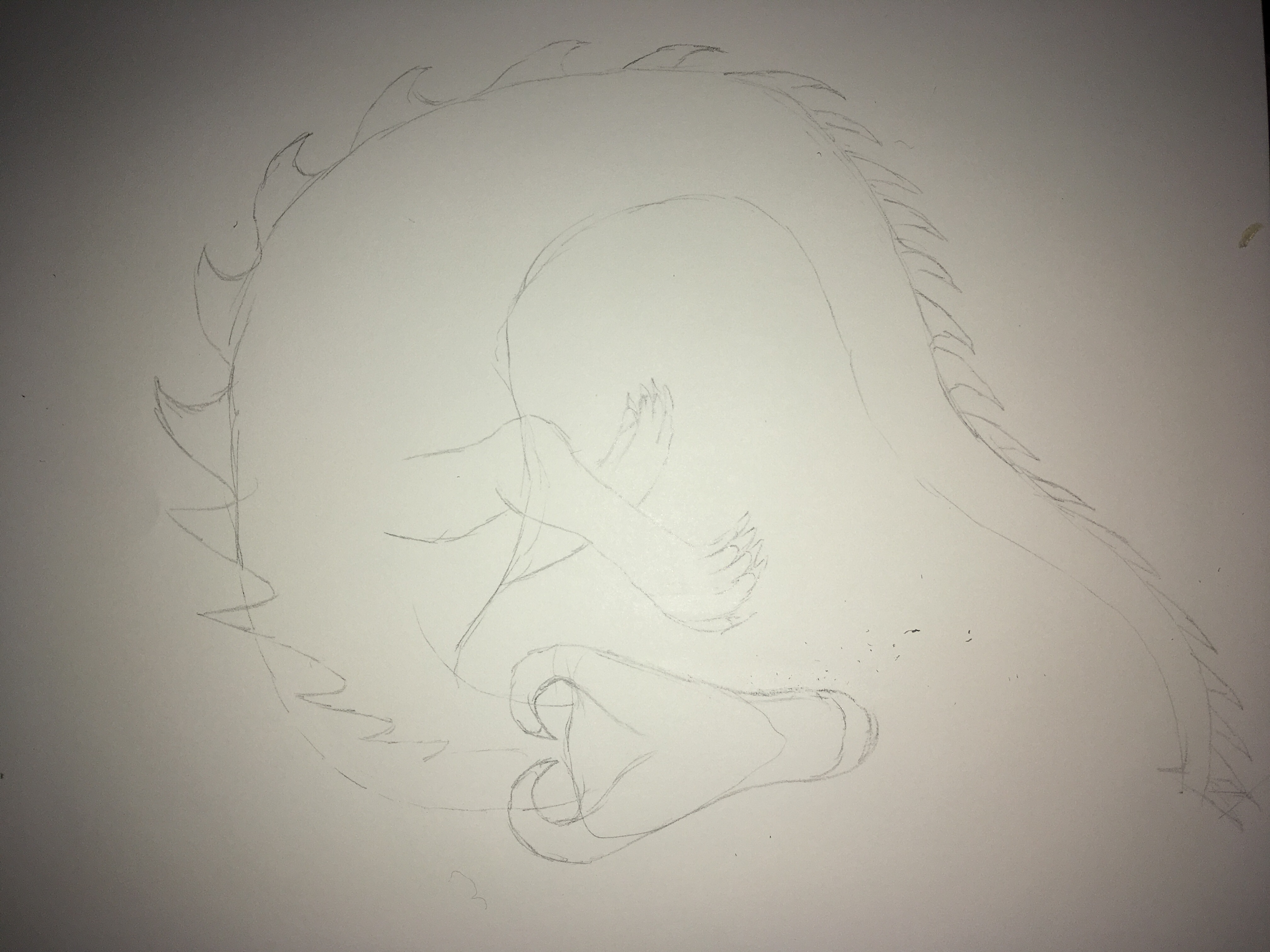 Sketch in pencil dragon curved