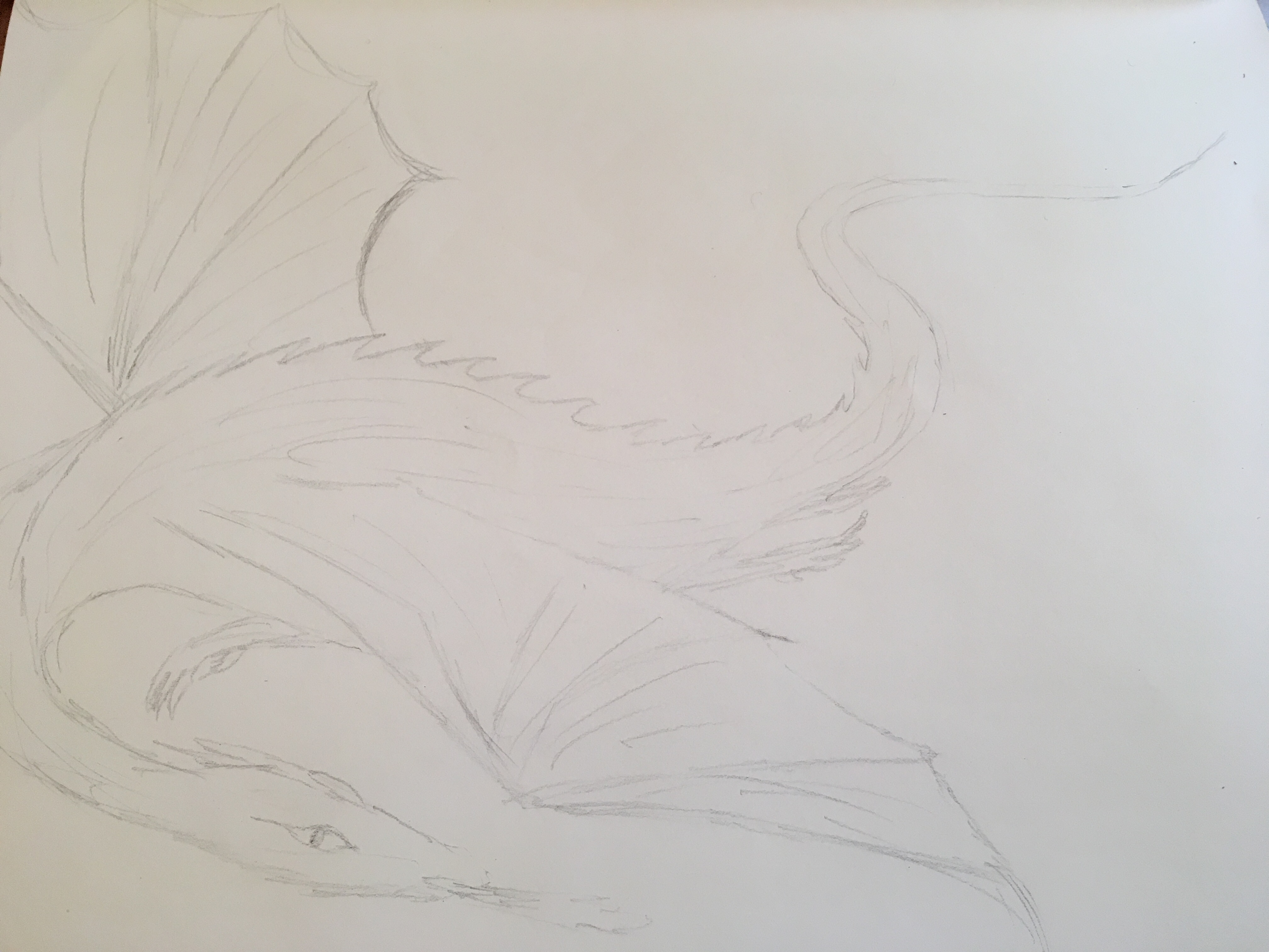 Dragon in pencil large realistic